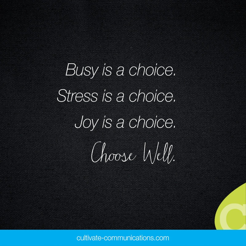 Busy is a choice. Stress is a choice. Joy is a choice. Choose Well.  –Ann Voskamp
