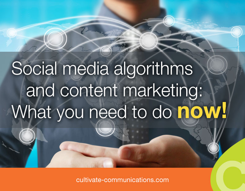 Social Media Algorithms And Content Marketing