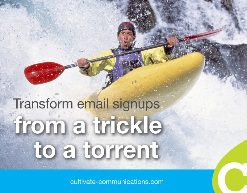 12 tactics to transform your email signups from a trickle to a torrent