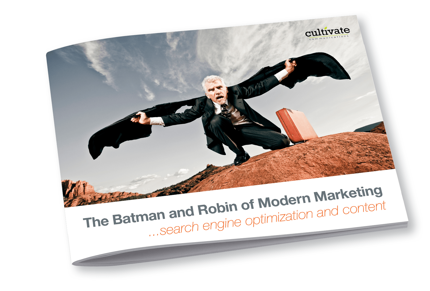Batman And Robin eGuide Cover