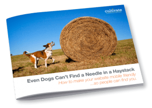 Needle In A Haystack Cover
