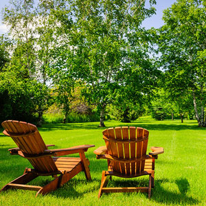 Sitting In Chair Admiring The Trees