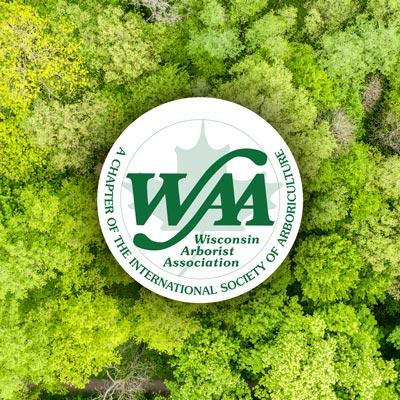 WAA index image